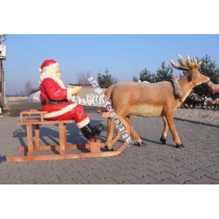 Mikołaj na saniach renifer